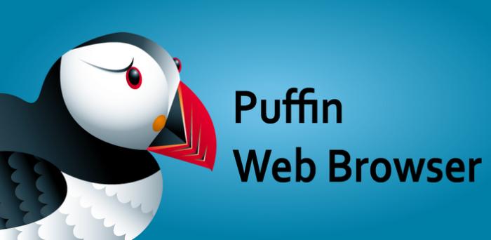ver una web con Flash en Android