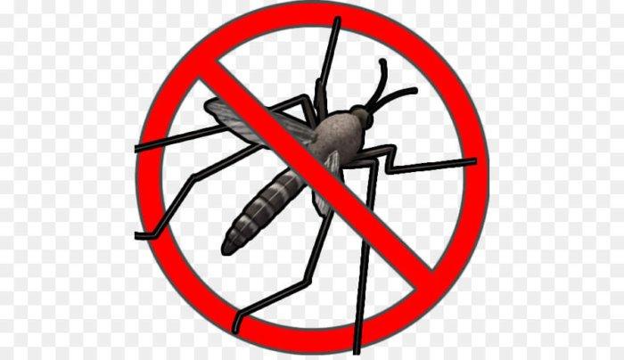 App para librarte de los mosquitos